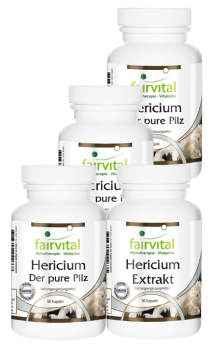 Hericium supply for 3 months - 4 x 90 capsules | vital substances & healthcare products | Fairvital