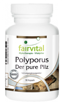 Polyporus - the pure mushroom 500mg - 90 capsules | vital substances & healthcare products | Fairvital