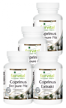 Coprinus supply for 3 months - 4 x 90 capsules | vital substances & healthcare products | Fairvital