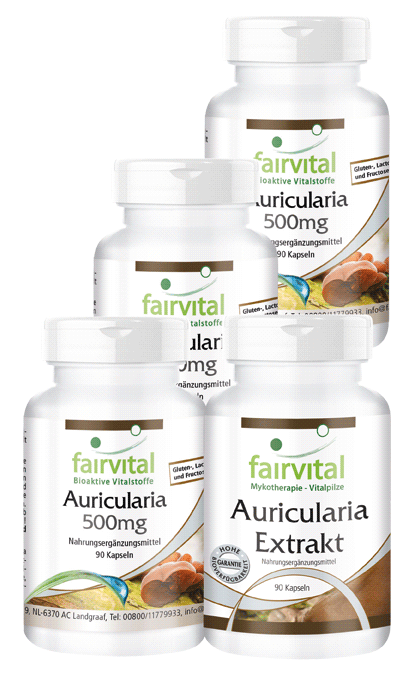 Auricularia supply for 3 months - 4 x 90 capsules | vital substances & healthcare products | Fairvital