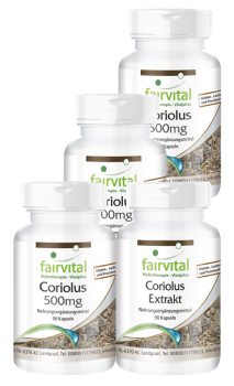 Coriolus supply for 3 months - 4 x 90 capsules | vital substances & healthcare products | Fairvital