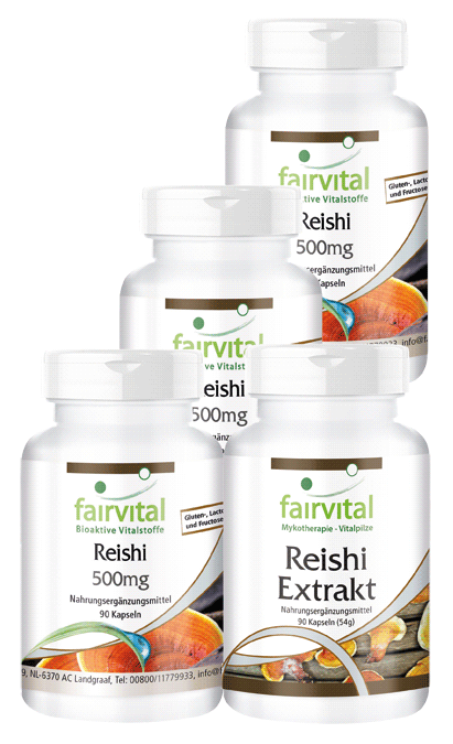 Reishi supply for 3 months - 4 x 90 capsules | vital substances & healthcare products | Fairvital