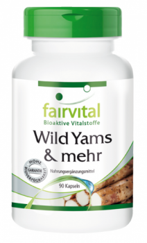 Wild Yams & more - 90 capsules | vital substances & healthcare products | Fairvital